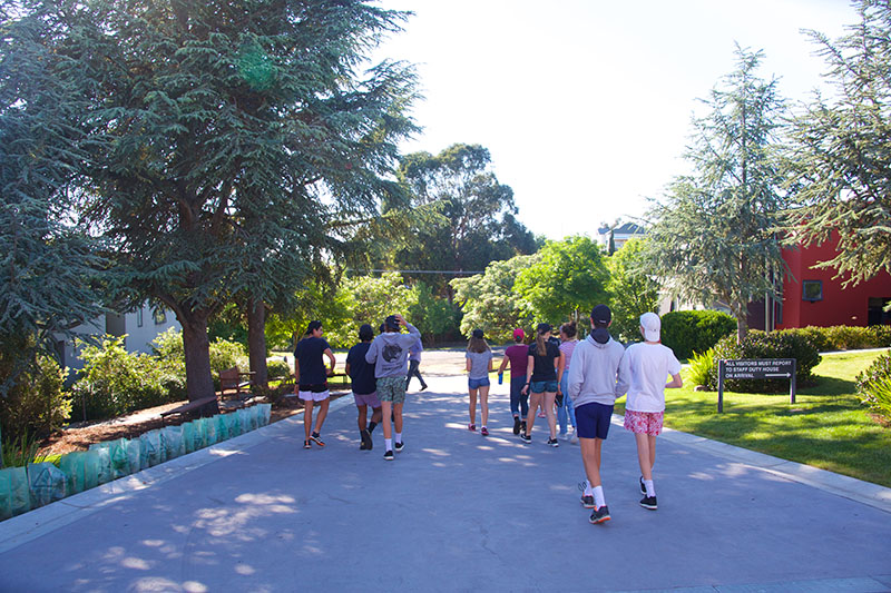 A large group of students walking down a path